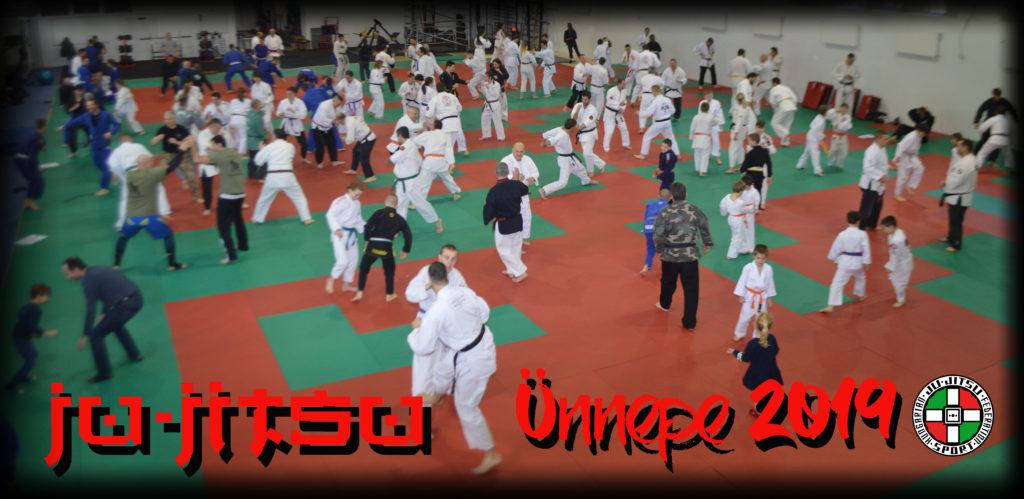 Közös Ju-jitsu munka